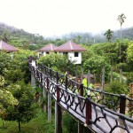 Jungle Hats Guest House am Parkeingang